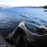 Lago Aluminé -   Villa Pehuenia, Argentina