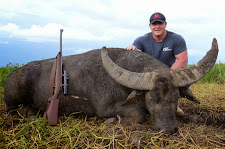 Justin Cruise took this big bruiser with a 458 win mag. This bull took several shots to stop him. He has massively thick horns.