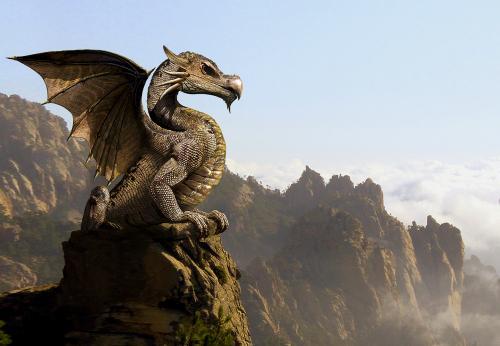 Little Dragon, Dragons