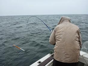 Photo: ・・・雨、降ってきました。