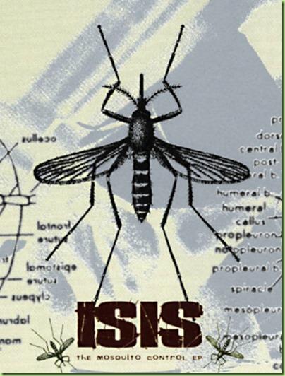 isis mosquito