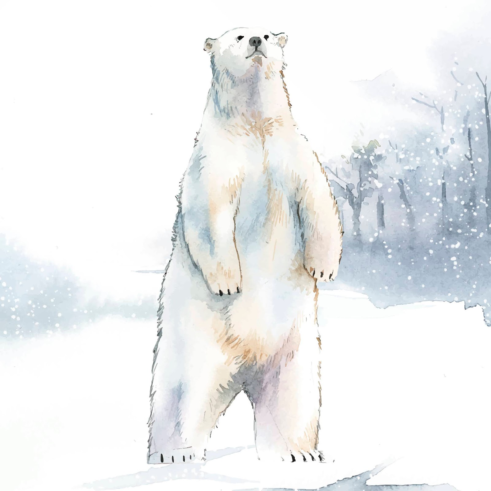 Hand Drawn Polar Bear Snow Watercolor Style Vector Free Download Vector CDR, AI, EPS and PNG Formats