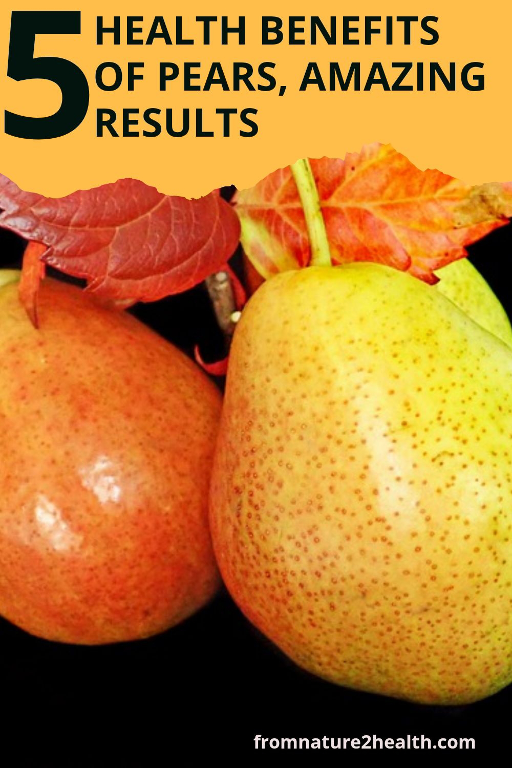5 Health Benefits of Pears for Cancer, Diabetes, Digestion, Heart Disease, Weight Loss
