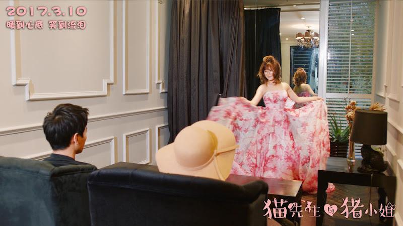 Mr. Cat and Miss Piggy China Movie
