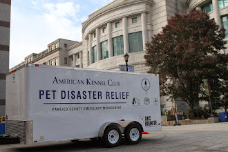 Photo: Credit: Robert Young (c) American Kennel Club