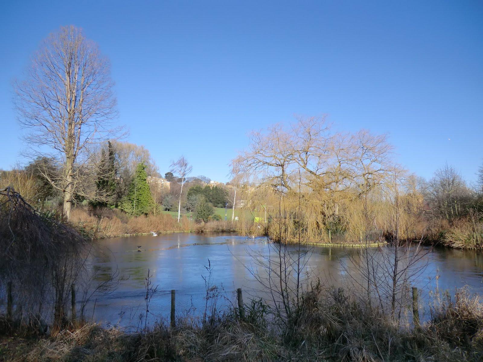 CIMG1551 Sydenham Wells Park