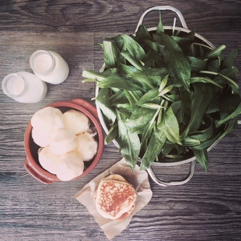 Foraging and Outdoor Foodie Fun on a Wild Garlic Bear Hunt - Dampers, Pesto, Butter