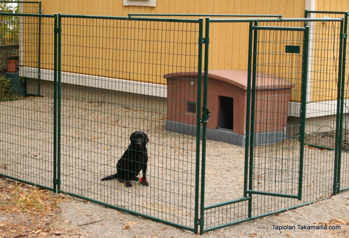 Jämpti-koiratarhan rakentaminen