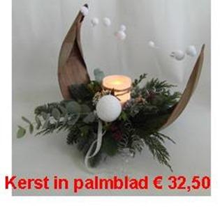 palmblad prijs