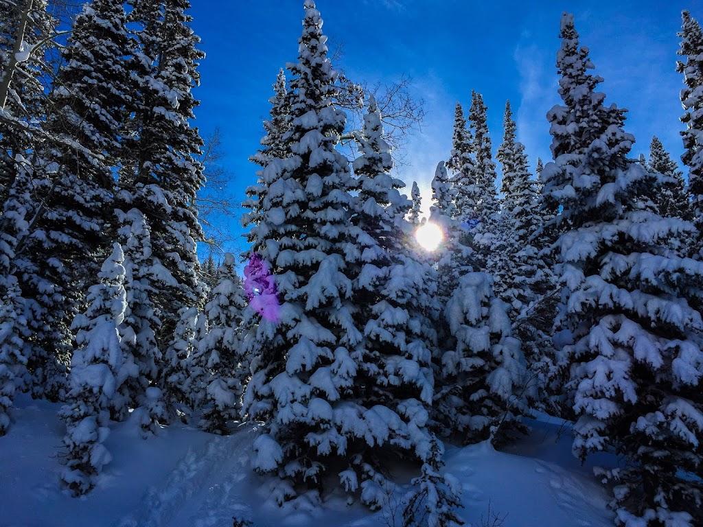 Snowshoeing White Pine - 6