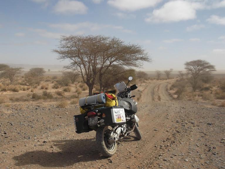 marrocos - Marrocos e Mauritãnia a Queimar Pneu e Gasolina - Página 10 DSCF1106