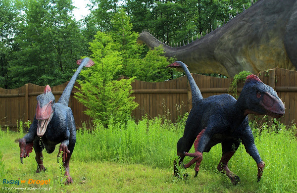 bałtów jura park  - dromeozaur - jaszczury biegacze
