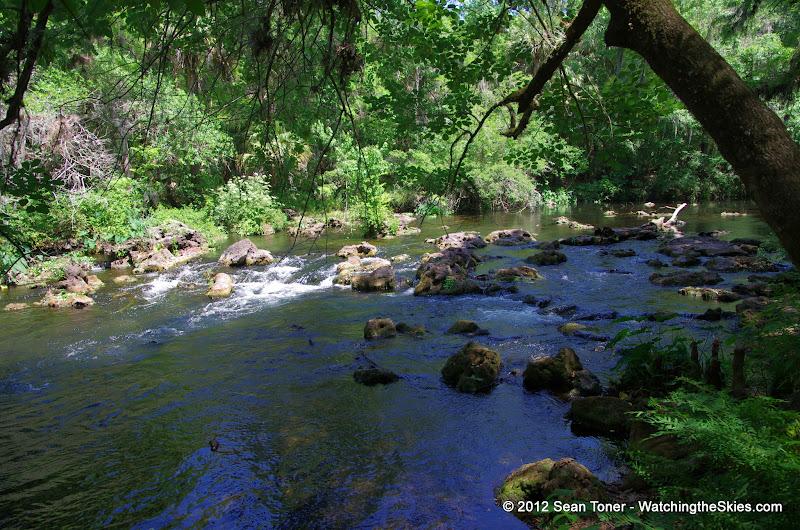 04-04-12 Hillsborough River State Park - IMGP9653.JPG