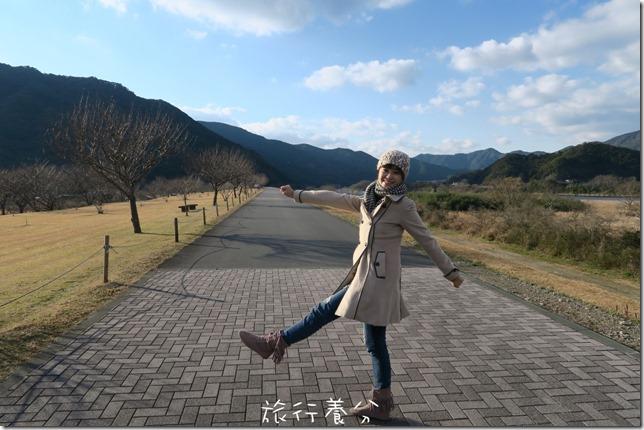 日本四國 中村 四萬十川 (32)