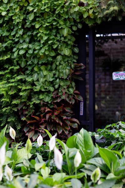 ASOW Eatery Garden
