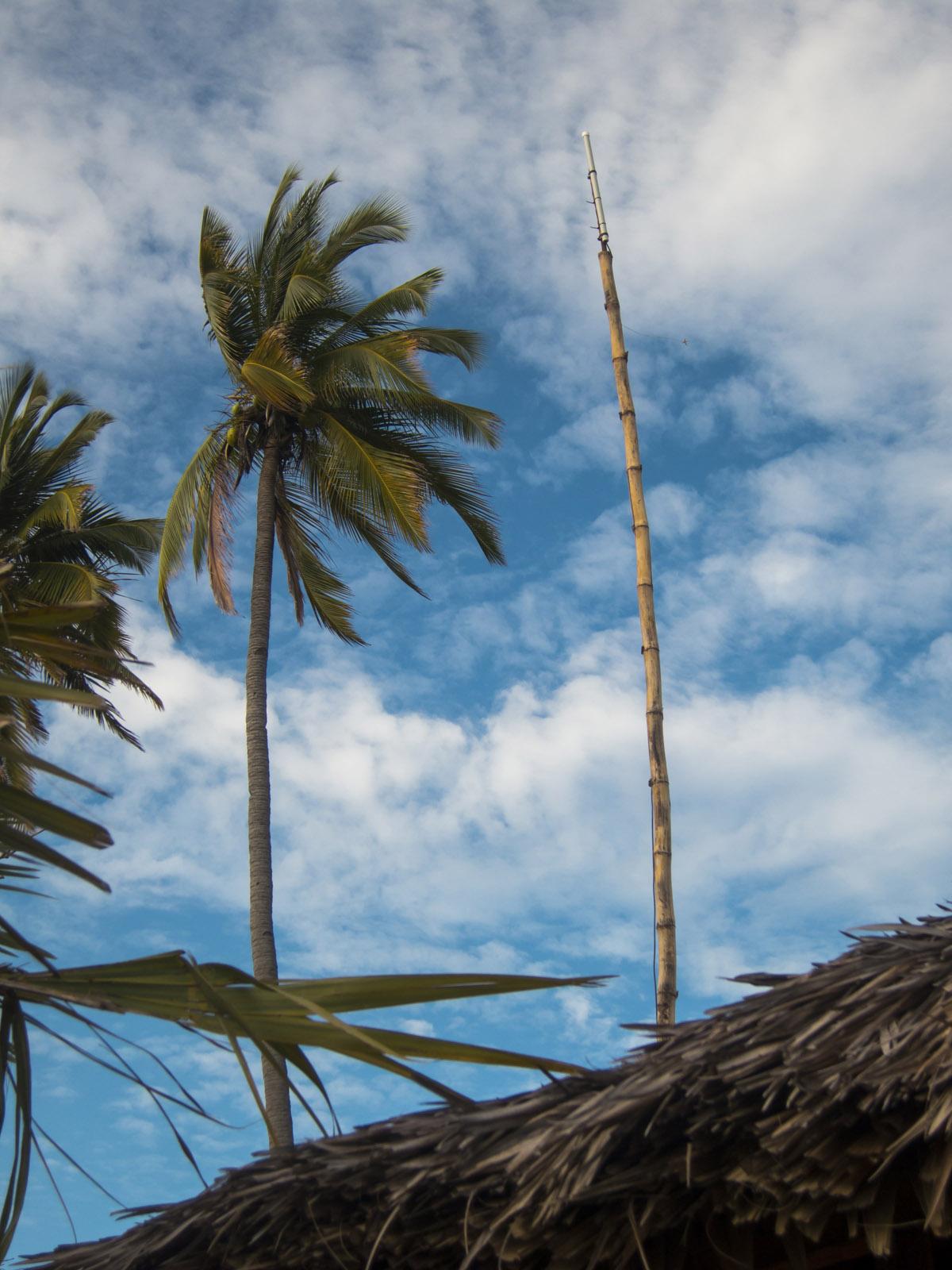 Madagascar9-057.jpg