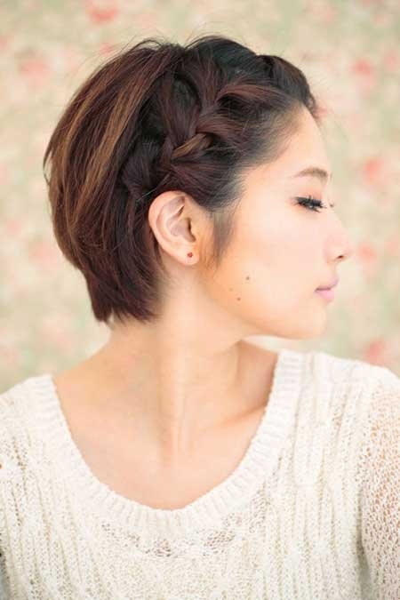 Braided Side View of Short Hairstyle: