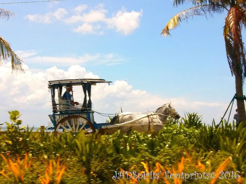 A photo of a horse drawn carriage along Roxas Boulevard Baywalk