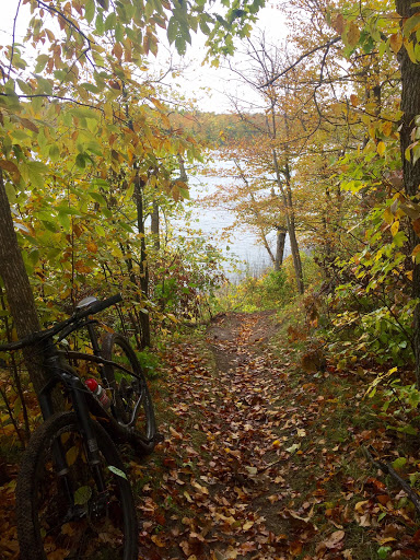 Fall color on the mountain bike trail