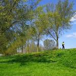 271-Aan de Zoolsloot vinden we een prachtig uitstapplaatsje...