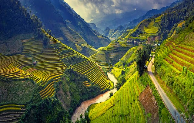 yaitu negara paling timur di Semenanjung Indochina di Asia Tenggara Bikin Mata Melek, Keindahan Panorama Sawah Di Vietnam Ini Tidak Ketulungan