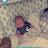 Crystal Coleman avatar image