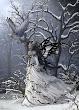 Winter Witchcraft