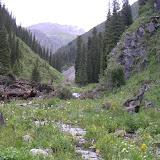 Vallon en amont du camp, vallée de Kyzyl-Ak-Suu (Semienovka), au nord du lac Issyk-Kul (Kirghizstan), 4 juillet 2006. Photo : F. Michel