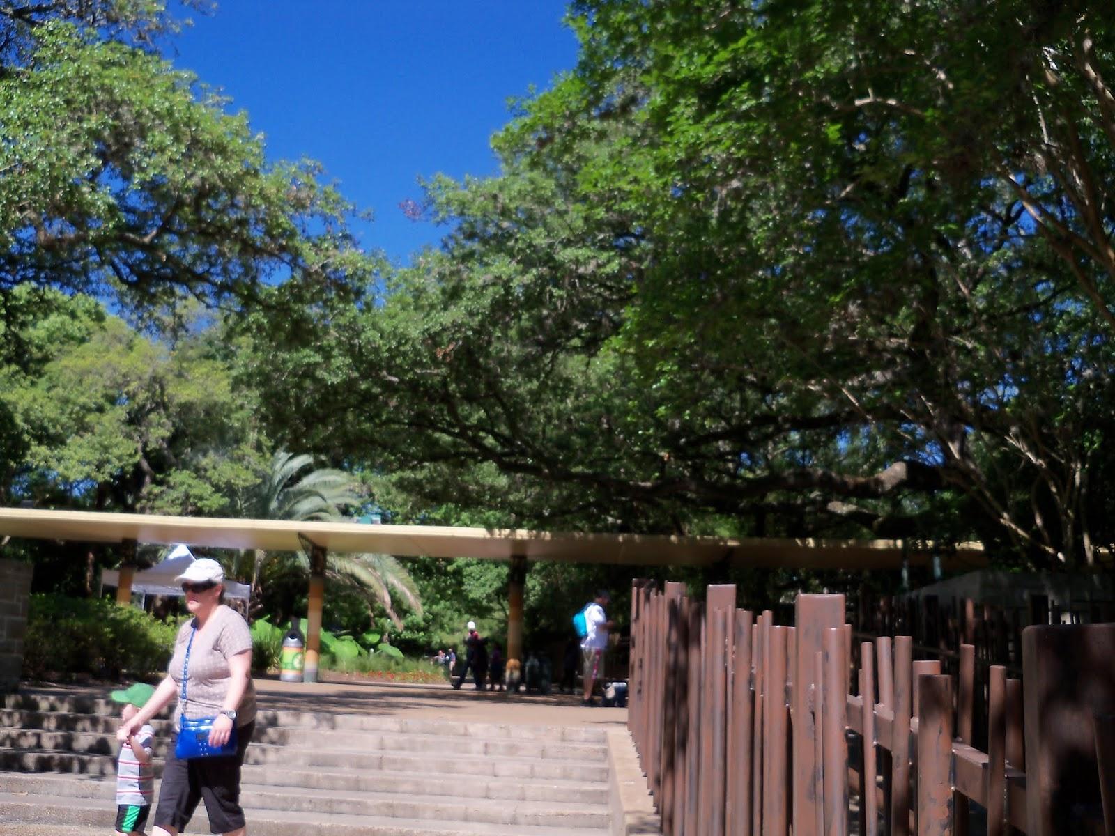 Houston Zoo - 116_8384.JPG