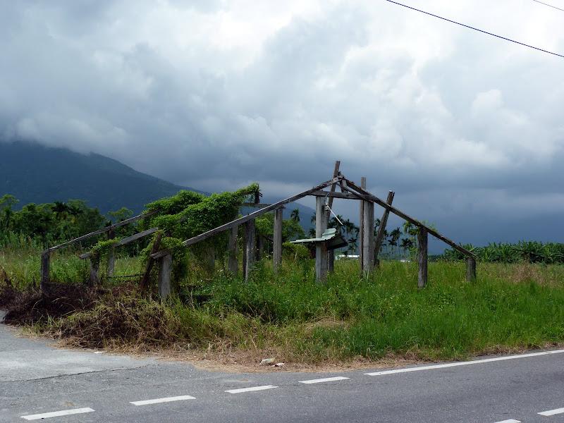 Hualien County. De Liyu lake à Fong lin J 1 - P1230749.JPG