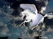 White Horse In Sky