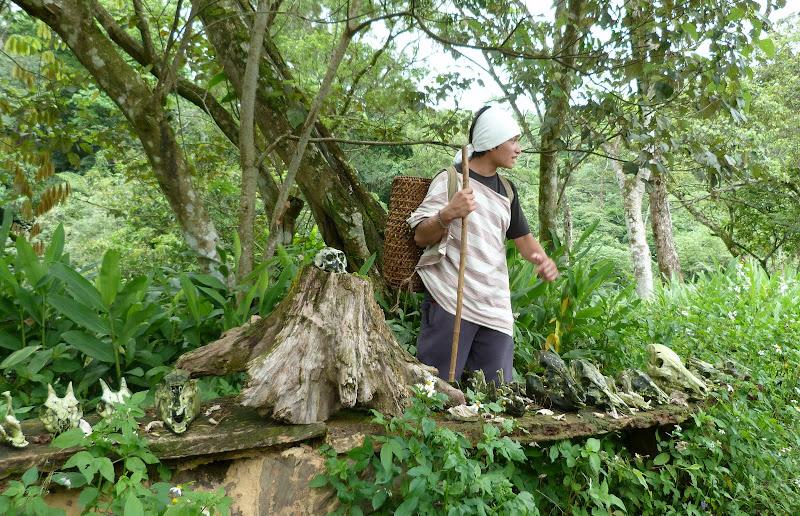 TAIWAN A cote de Luoding, Yilan county - P1130532.JPG
