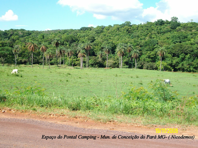 Pitangui (MG, Brésil), 19 novembre 2008. Photo : Nicodemos Rosa