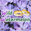 Wild Watermelon Wedding Company