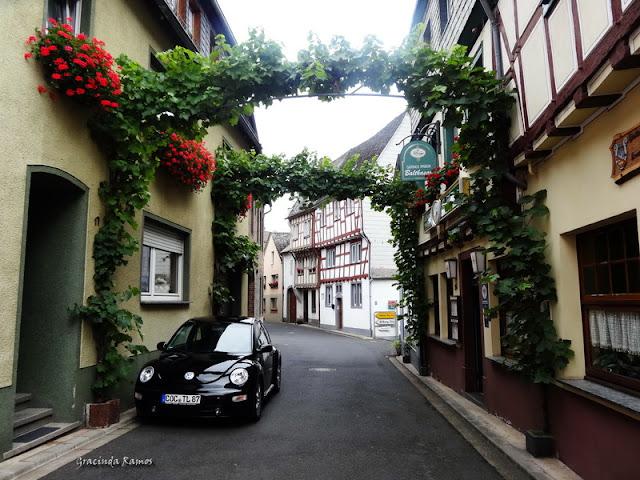 passeando - Passeando pela Suíça - 2012 - Página 21 DSC08545
