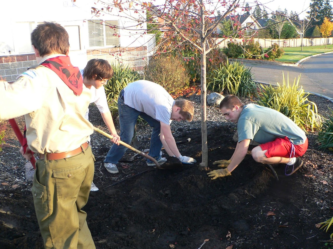 Tree Planting November 2010 - 110410 029.JPG