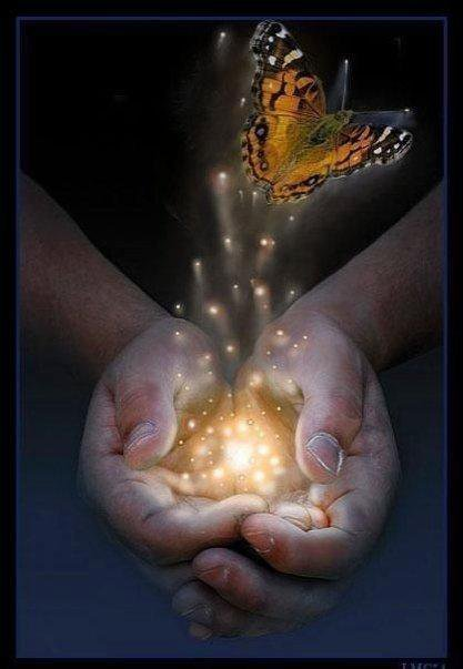 Magic Butterfly In Hands, Magic And Spells