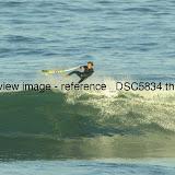 _DSC5834.thumb.jpg