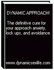 Cover of Gunwitch's Book Dynamic Approach