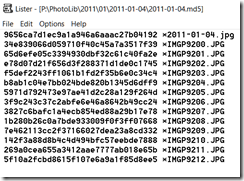 Example of the MD5  Hash Values