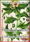 Common Herbs for Common Illnesses