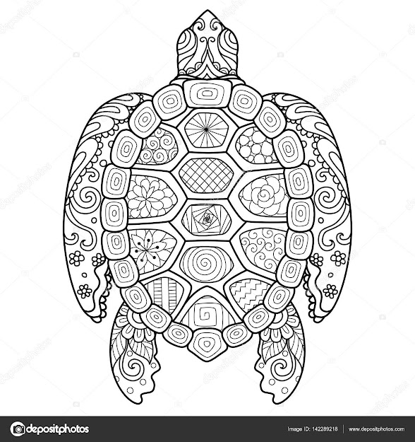 Zendoodle Stylize Of Beautiful Turtle For Tshirt Design Adult Coloring  Book Page