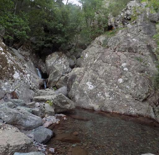 Le point d'eau sur la Cavichja