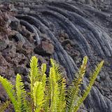 Hawaii 2013 - Best Story-Telling Photos - IMGP8235.JPG