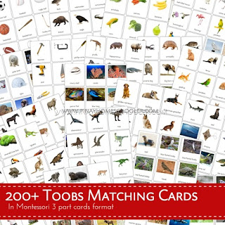 200+ TOOBs Matching Cards Bundle Pack
