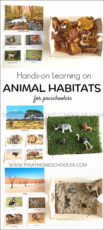 AnimalHabitatsPreschool