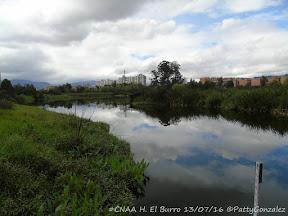 #CNAA H. El Burro 13/07/16 ©PattyGonzalez