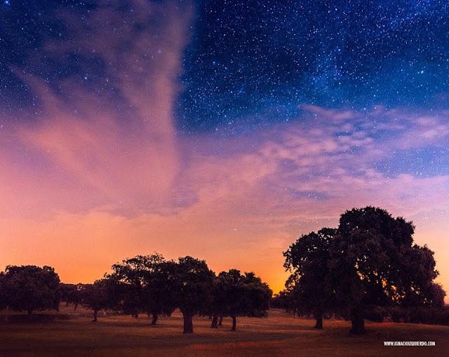 estrellas-los-pedroches-starlight.jpg