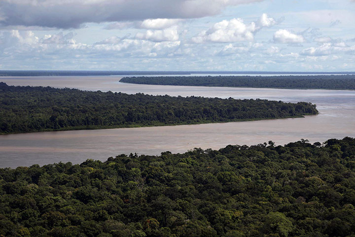 The Amazon rainforest is a major global carbon sink. Its survival is threatened not only by deforestation but by climate change, which could kill trees and thus create feedback loops that increase global warming. Photograph: Karla Gachet/Greenpeace
