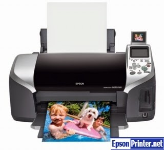 How to reset Epson R320 printer